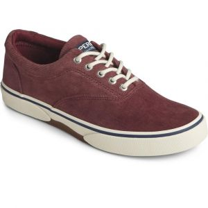 Sperry®  Men's Halyard CVO Corduroy Sneaker - Burgundy
